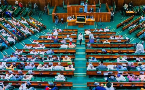 EXCLUSIVE: House of Reps move to bar courts from sacking President, Governors