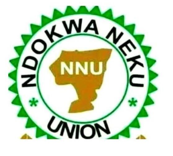Ravaging Flood In Ndokwa Land: NNU Caretaker Committee Calls For Urgent Interventions By Both State And Federal Government